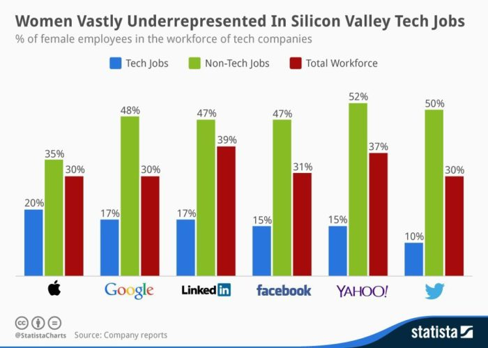 Mujeres poco representadas en Silicon Valley