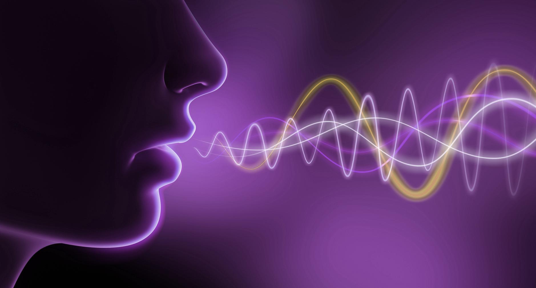 Resultado de imagen de voz