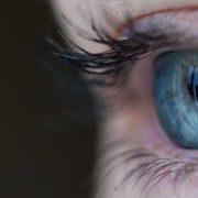 El blog ayuda a articular nuestra identidad online / Guillem Recolons