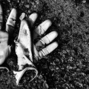 De Recursos Humanos a Residuos Humanos
